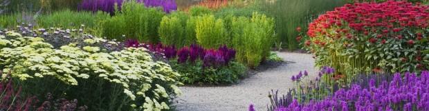 Utilizarea Florilor in Amenajarea Gradinii
