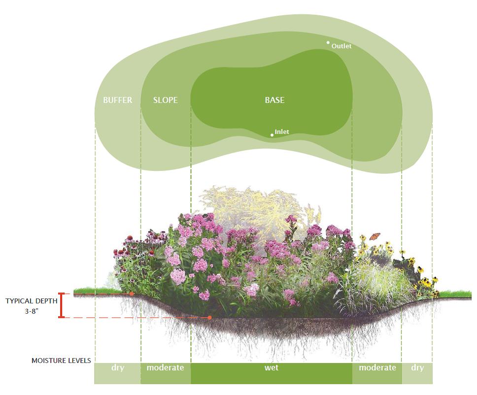Rain-Garden-Diagram